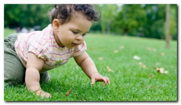 Когда младенцы сидят, переворачиваются и ползают